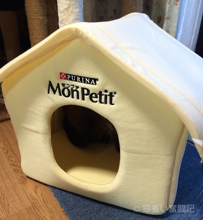 もらえるプレゼント景品の猫ハウス